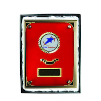 PSR5: Plaque with Glass